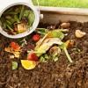 compost1-kXEB-U43100159304314j3F-1224x916@Corriere-Web-Sezioni-593x4431